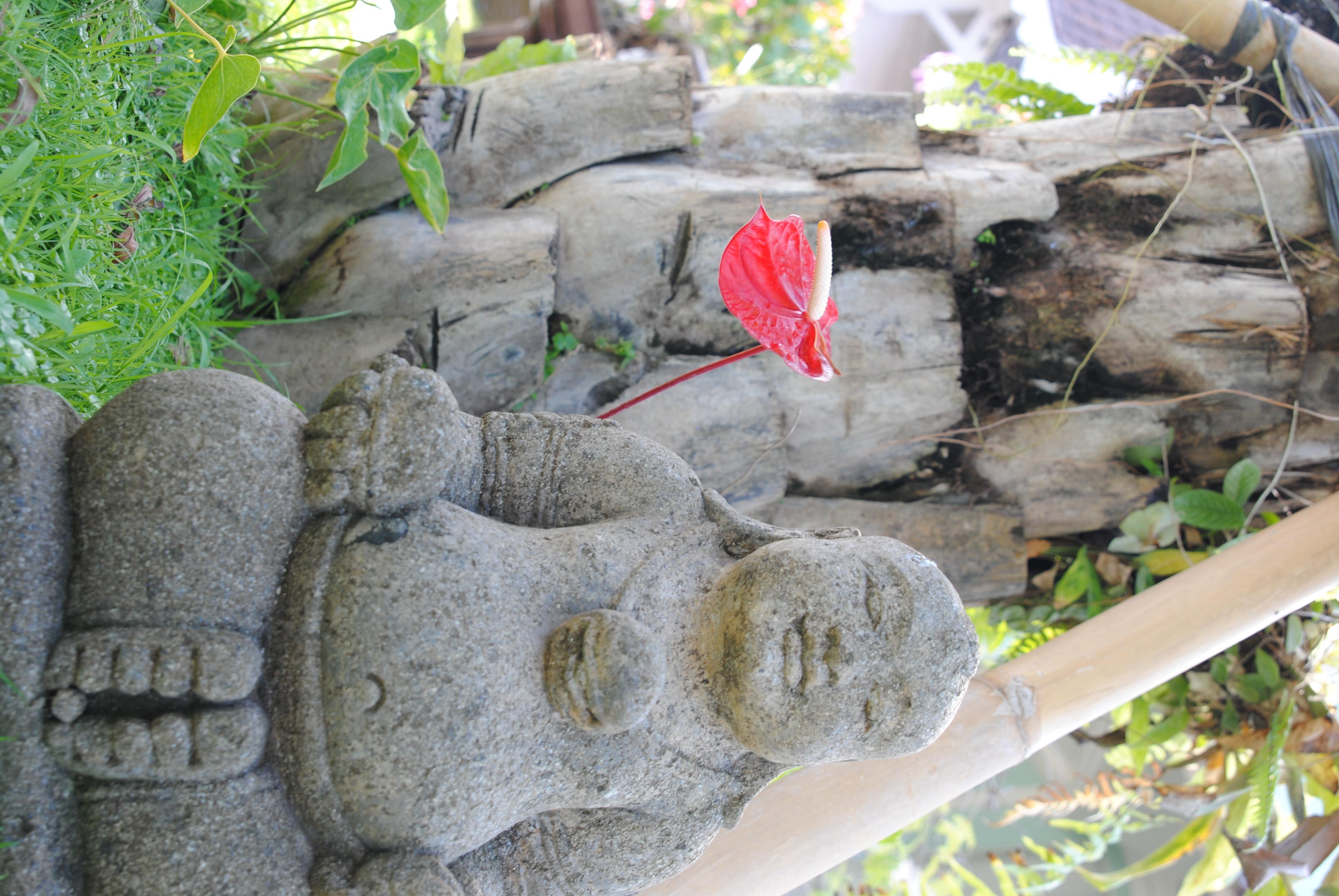 Ein traumhafter Garten sorgt für entspannte Atmosphäre