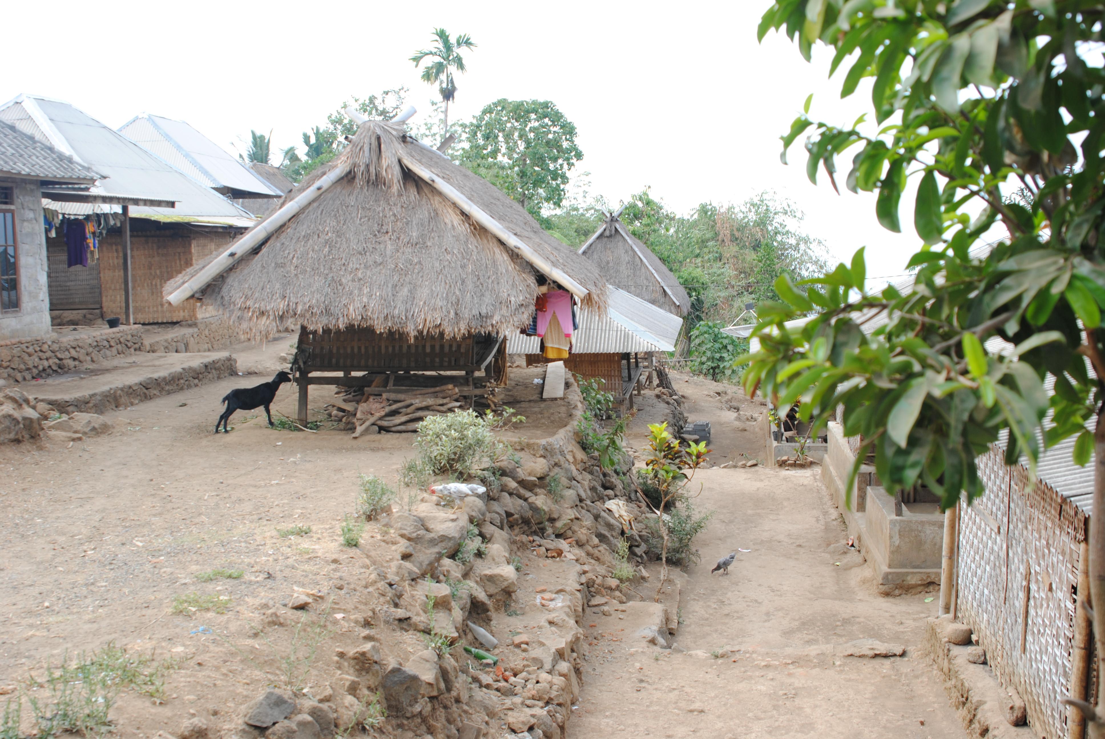 Wir entdeckten einige Sasak-Dörfer in der Umgebung.