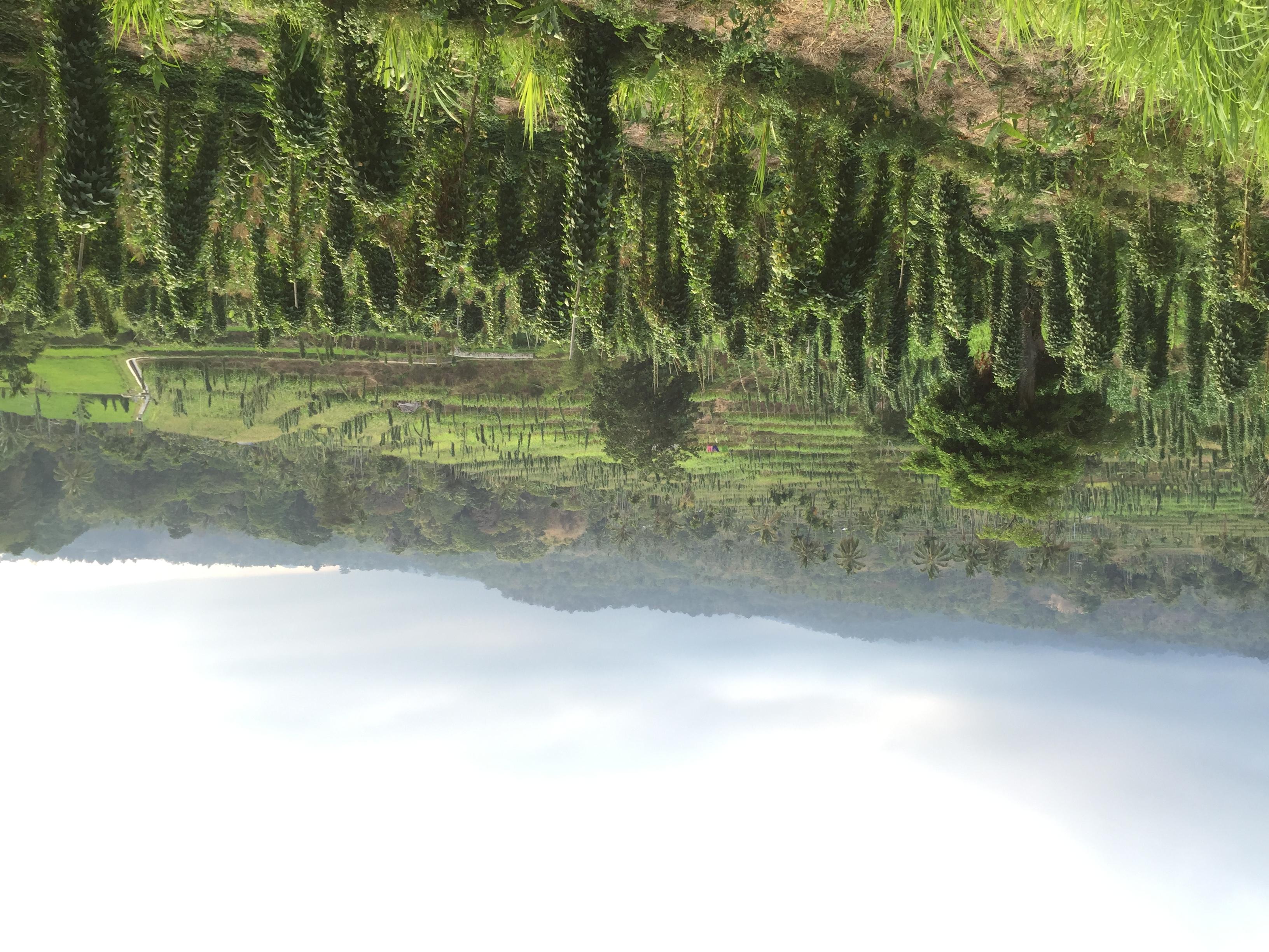 Und fanden wunderschöne Reisterrassen.
