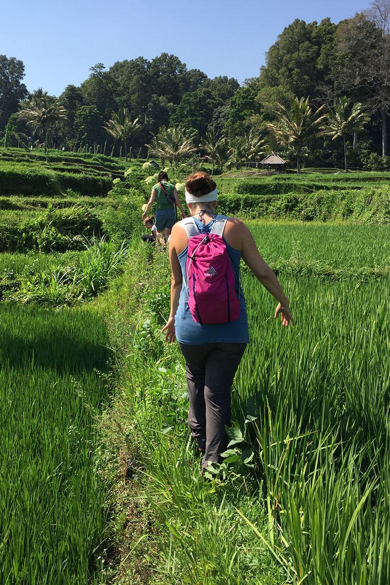 Auf den schmalen Reisterrassen wandern.