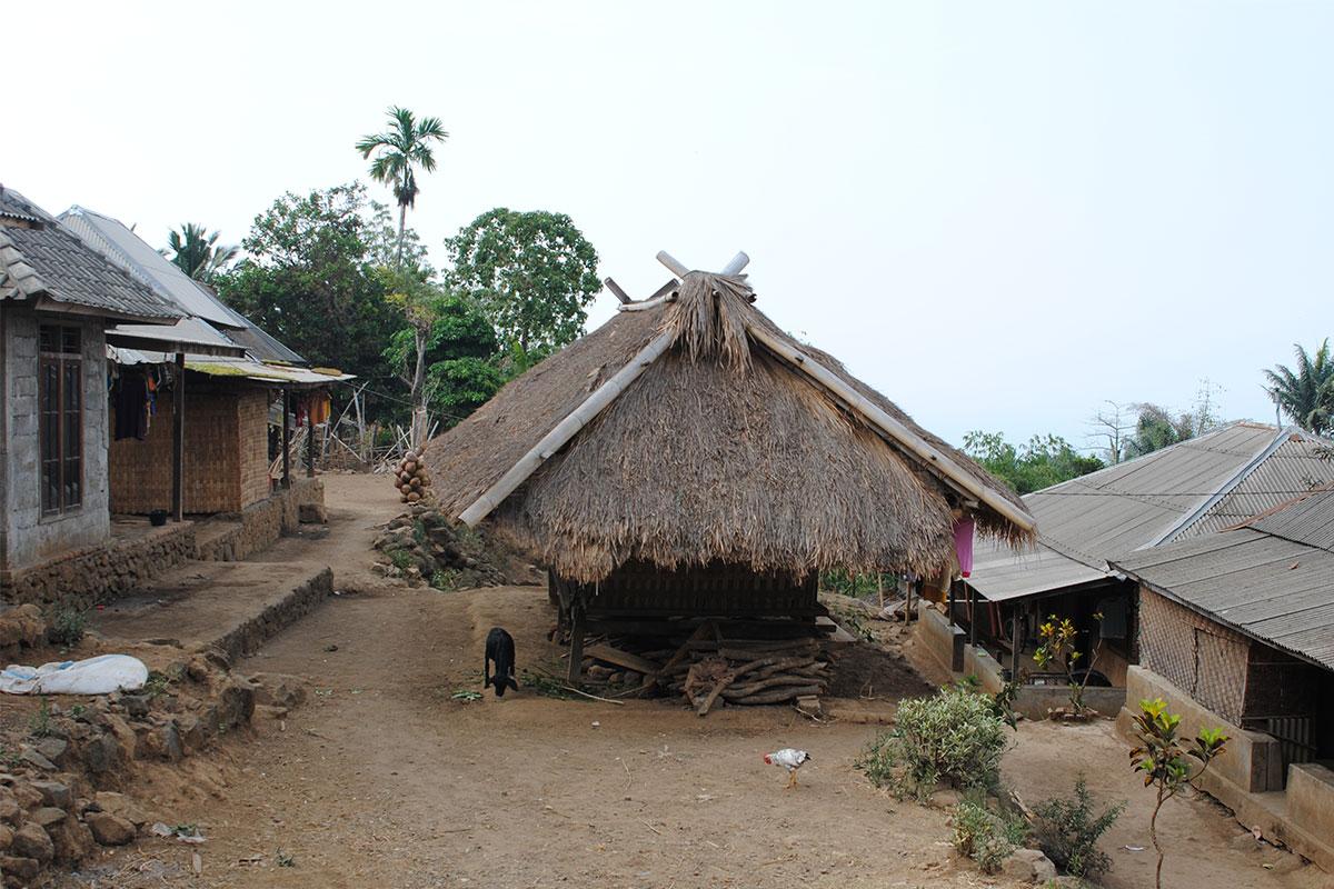 Einen Einblick in das Dorfleben bekommen.