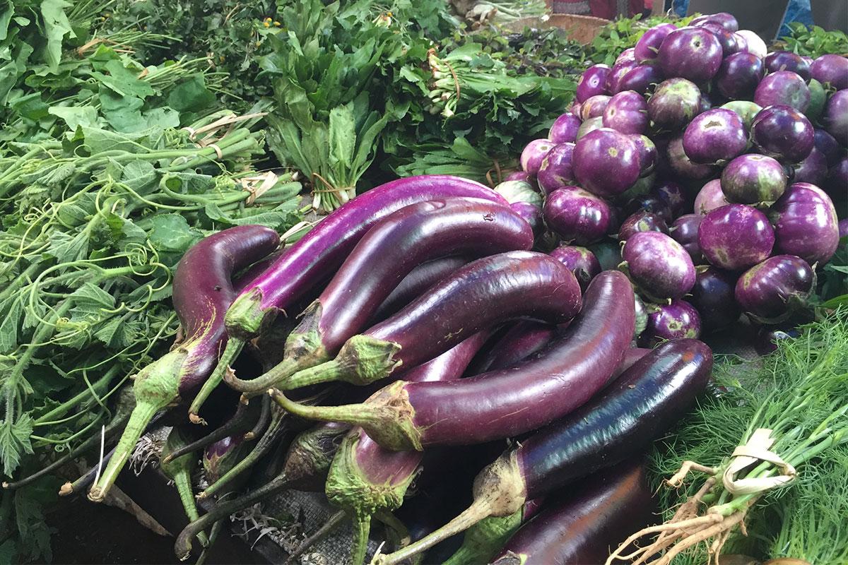 auberginen-gili-gede-lombok