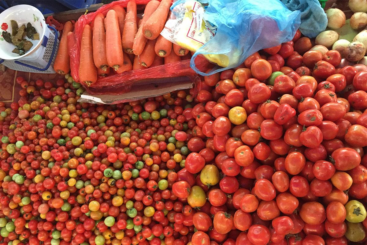 tomaten-gili-gede-lombok