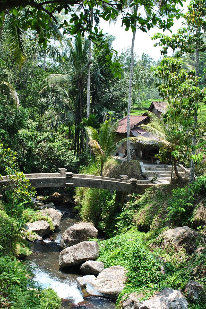Gunung-Kawi-Tempeltour-in-Bali