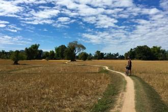 Jan-Fahrrad-im-Feld-Laos-Viertausend-Inseln