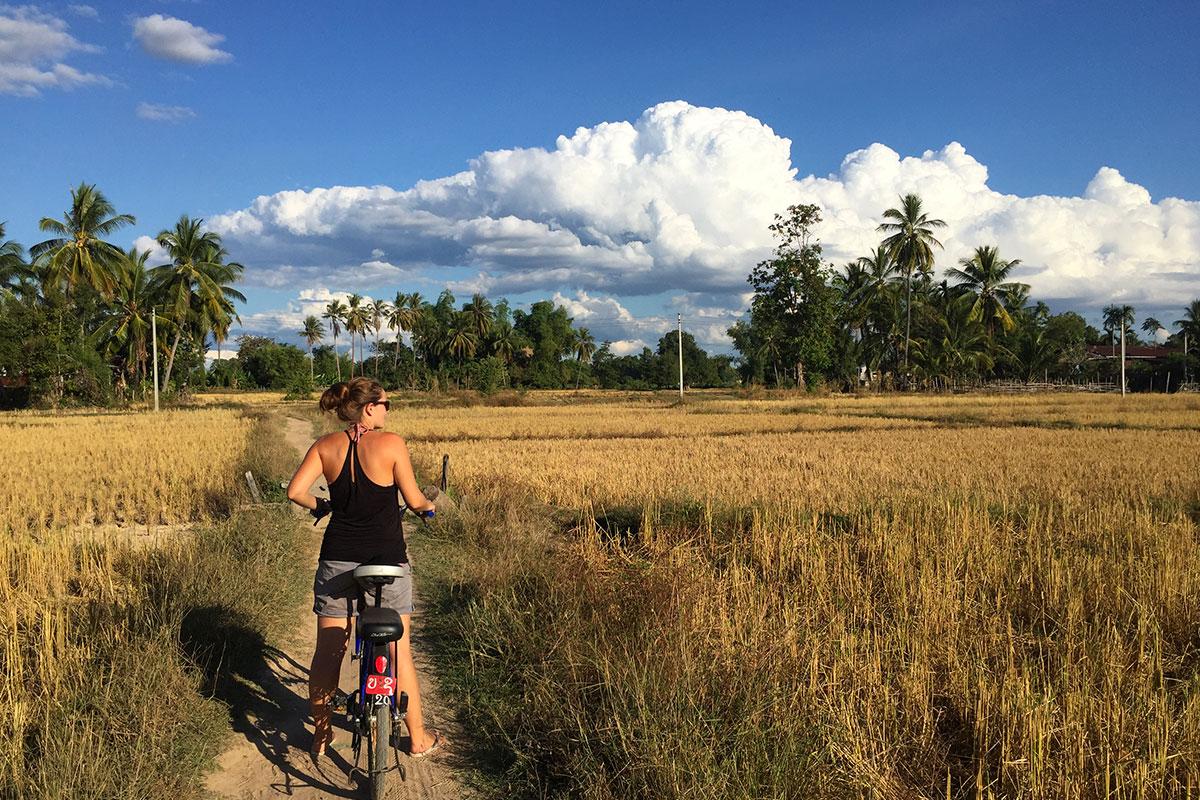 Radfahren-im-Feld-Laos-Viertausend-Inseln