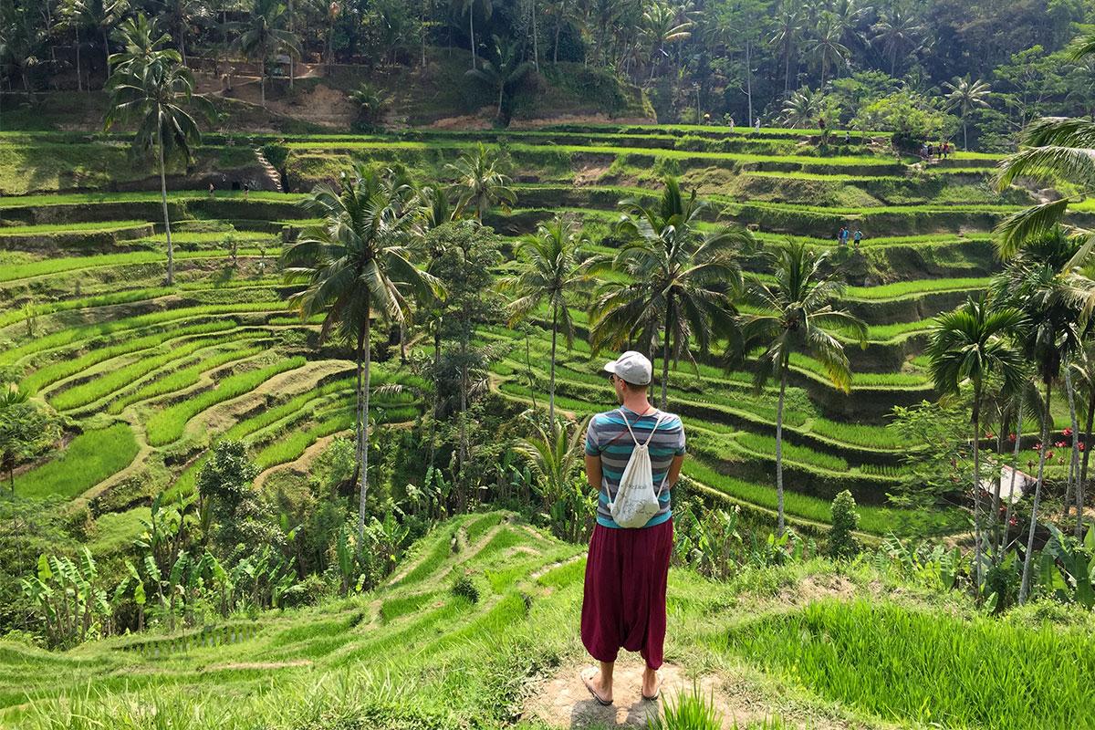 Die Reisterrassen von Tagelalang.