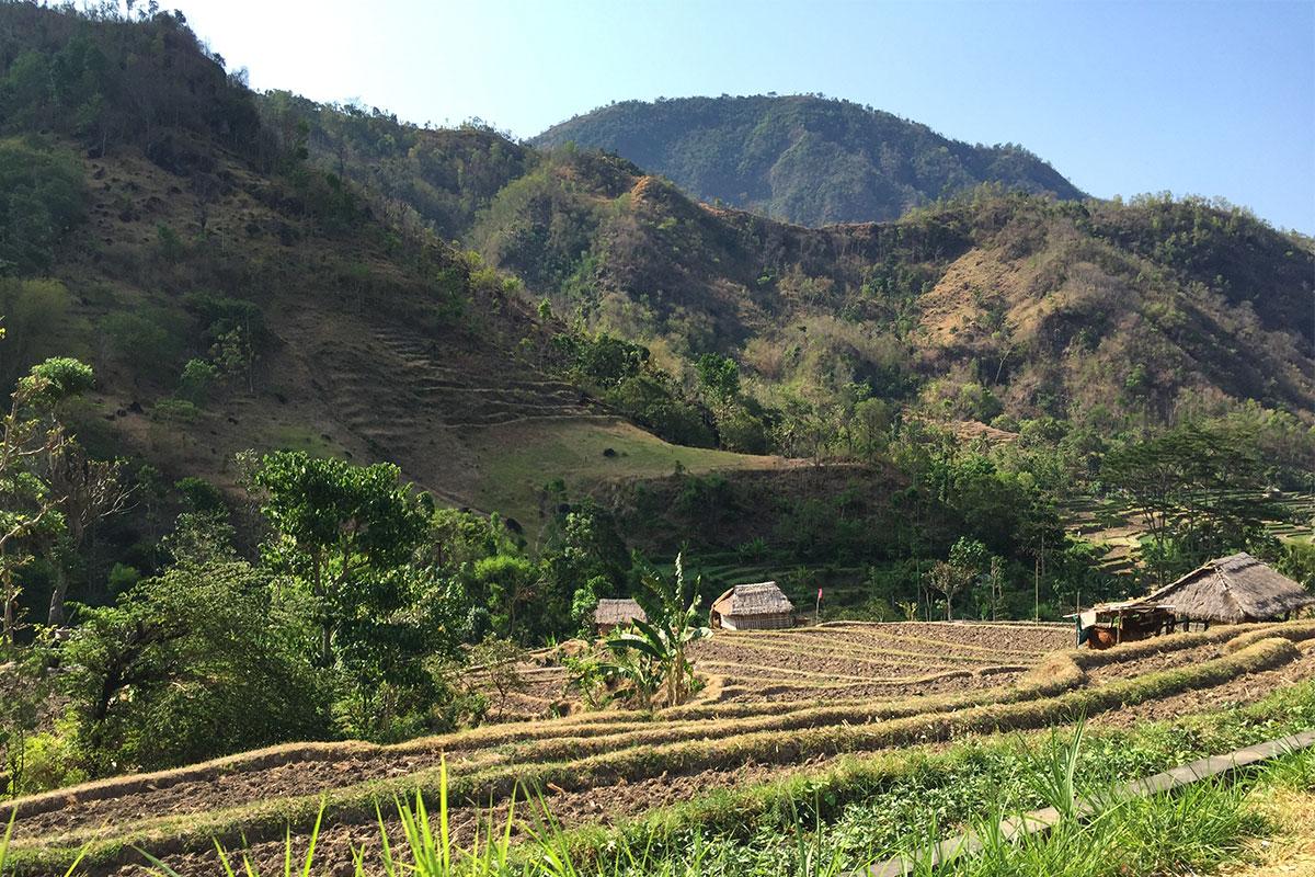 Bergpanorama-Rollertour-Bali-Sidemen