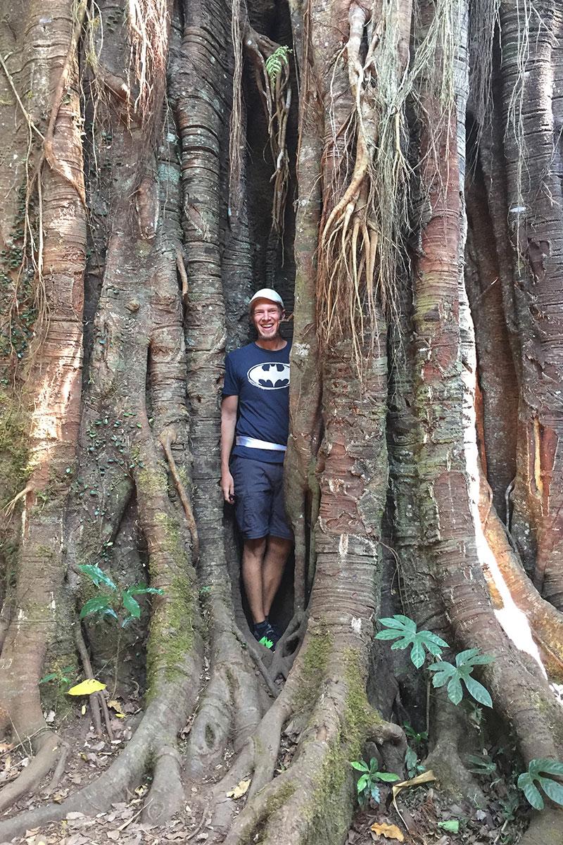 Jan-im-Baum-Waldlauf-Munduk-Bali