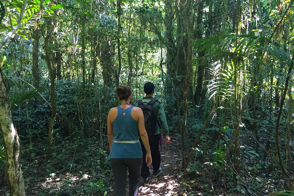 Marsch durch den balinesischen Dschungel.