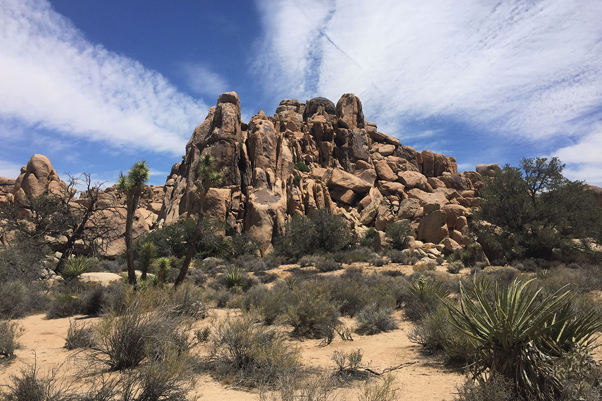 felsen-joshua-tree-nationalpark-kalifornien-usa