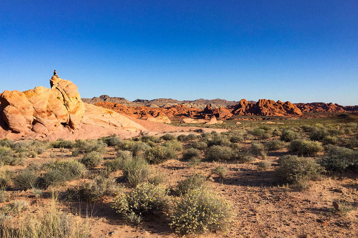 frau-auf-fels-valley-of-fire-nevada-usa