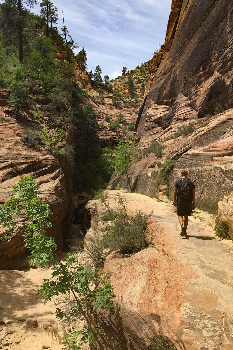 mann-auf-east-rim-trail-zion-canyon-nationalpark-utah-usa