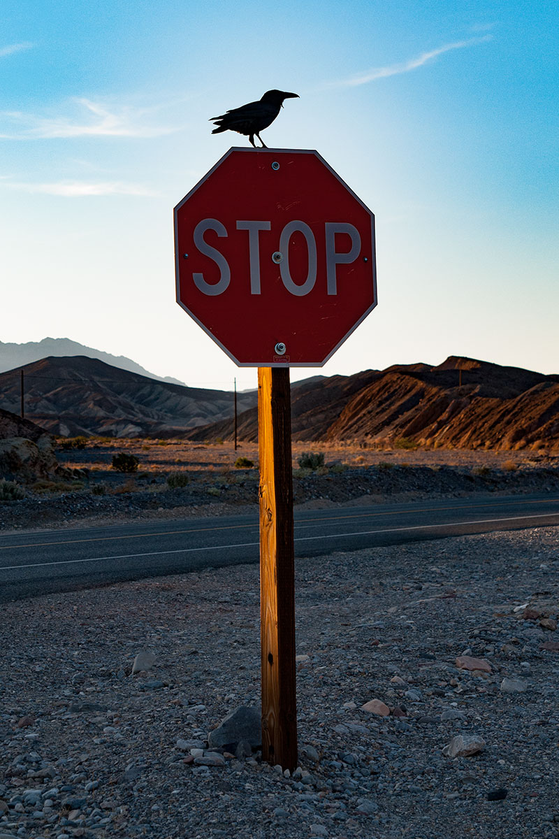 Unsere letzte Warnung bevor wir ins Death Valley herein fuhren.