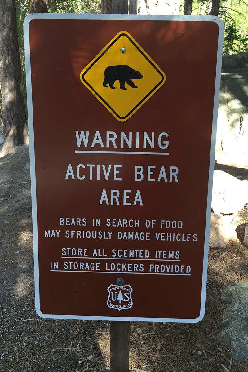 schild-active-bear-area-mount-whitney-nevada-usa