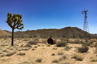 wild-wear-kulisse-joshua-tree-nationalpark-kalifornien-usa