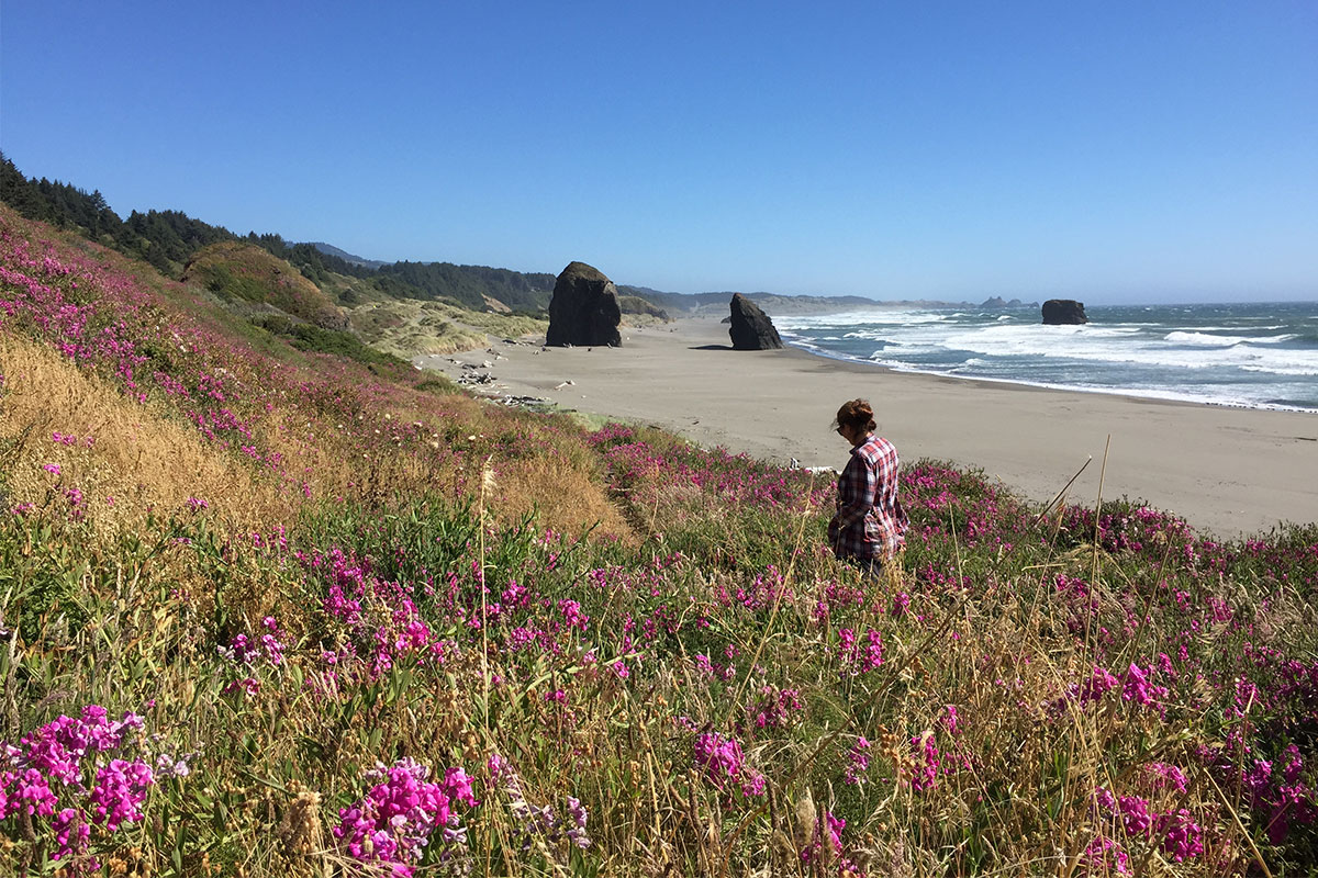 blumenwiese-strand-oregon-usa
