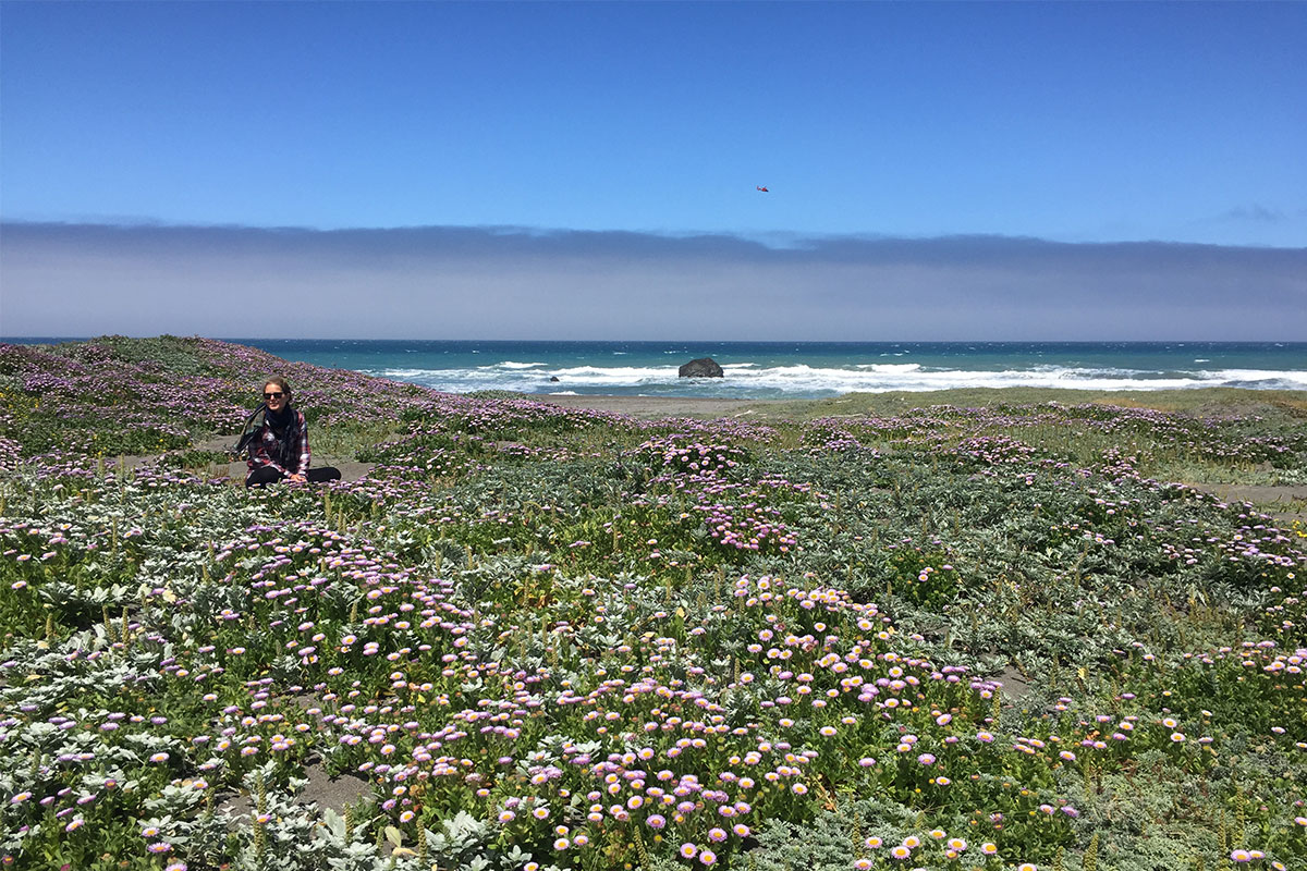 frau-blumenwiese-lost-coast-oregon-usa