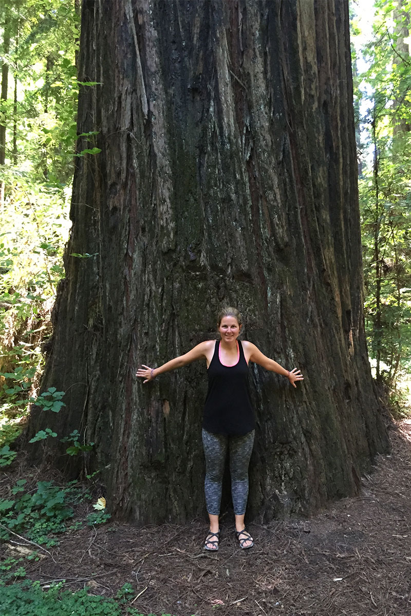 frau-vor-baum-avenue-of-the-giants-oregon-usa